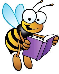 Pszczoła książka